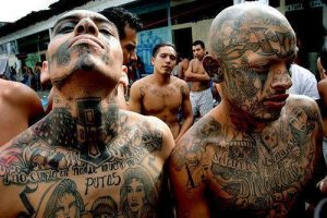 Members of the gang MS-13